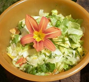 sałatka z liliowcem