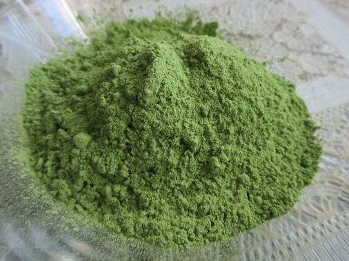 młody zielony jęczmień na trądzik